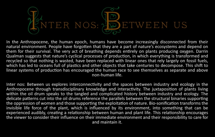 inter-nos-title-and-artist-statement.jpg